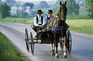 gallery-1475271837-amish-buggy-pa